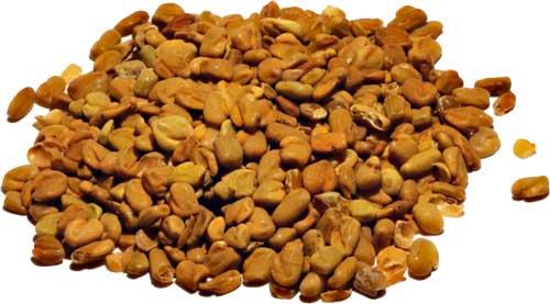Семена пажитника при сахарном диабете