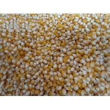 Кукуруза лопающаяся (попкорн)