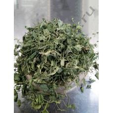 Ореховая трава ( лист пажитника греческого )