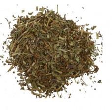 Будра плющевидная трава