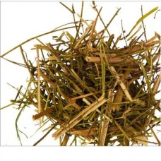 Дербенник трава