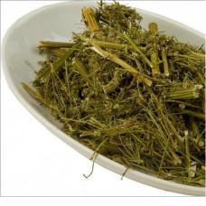 Дягиль лекарственный трава
