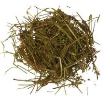 Хвощ полевой (трава)