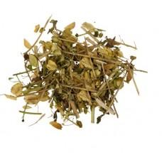 Ярутка полевая (трава)