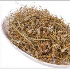 Лапчатка гусиная (трава)