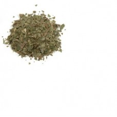 Лещина лист