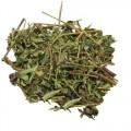 Шлемник байкальский (трава)