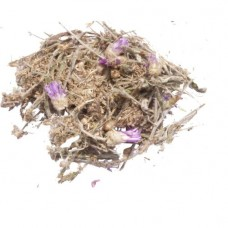 Сухоцвет (трава)