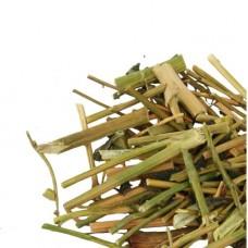 Сурепка (трава)