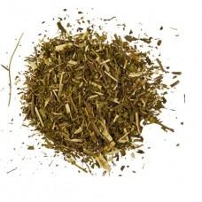 Вербена лекарственная трава