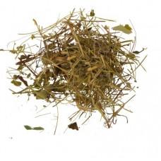 Земляника трава