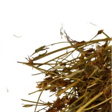 Зверобой трава и цветки