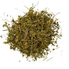 Звездчатка трава