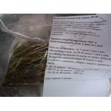 Болиголов пятнистый ( трава )