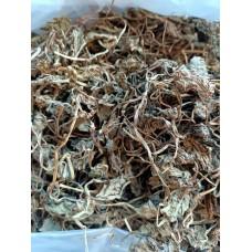 Готу кола (центелла азиатская) трава памяти