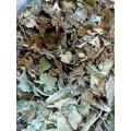 Калея Закатечичи (Calea Zacatechichi) сухой лист