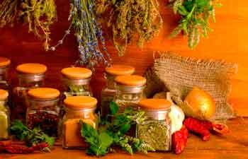 Сроки хранения специй и трав